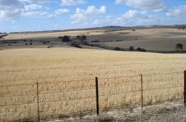 Sprzedaż działki rolnej - jakie dokumenty sa potrzebne?