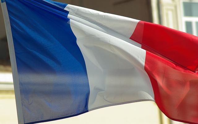 Język francuski jako dziedzina życia